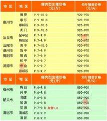 广州日锋- 2016年3月10日行情信息