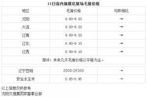 【文捷集团】3月11日辽宁省内猪评:未来几天毛猪价格以平稳为主