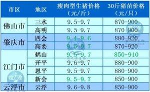 牧之源--广东2016年03月13日猪讯