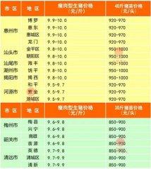 广州日锋- 2016年3月13日行情信息