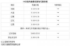 【文捷集团】3月14日辽宁省内猪评:未来几天毛猪价格以平稳为主