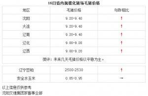 【文捷集团】3月16日辽宁省内猪评:未来几天毛猪价格以平稳为主