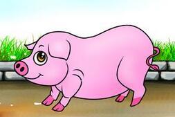 闫之春:2016年或会成为养猪行业真正的分水岭
