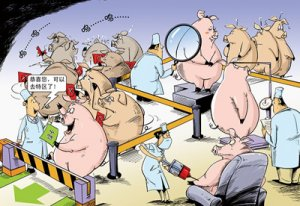 80头有毒害生猪仅检测费用就15万