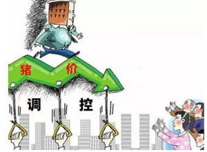 猪价再涨或将有可能促使政府出台调控策略