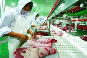 无莱克多巴胺猪肉认证每年价值3-5亿美元
