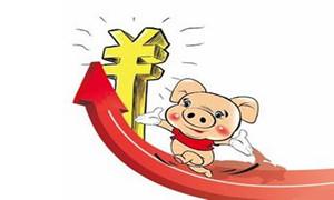 江苏泗阳县生猪市场价格继续上扬