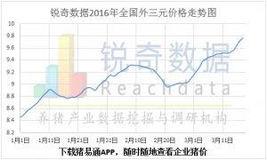 3月18日猪评:巨头挺价猪价继续上调向10元/斤进军