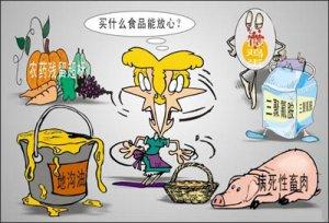 600专家学者重庆讨论畜牧食品安全