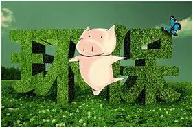 环保型养猪场是养猪业的发展模式之一