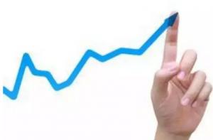 山东猪价继续上涨 暂无降价可能