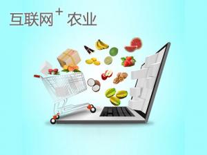 互联网时代,农村创业的九大商机