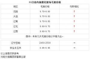 【文捷集团】3月21日辽宁省内猪评:未来几天毛猪价格以平稳为主