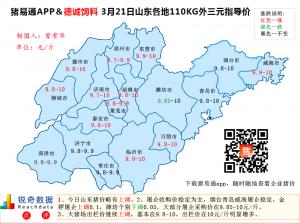 猪易通APP3月21日山东外三元价格地图