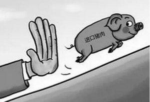外国猪成为高效率打压猪价的撒手锏?
