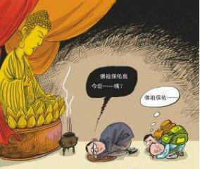 老刘养猪故事――佛能救活猪场吗?