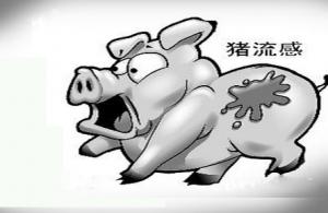 巴基斯坦发生猪流感疫情