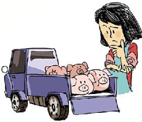 广西贵港市仔猪价格创近六年新高