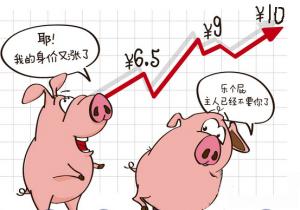 """江苏无锡生猪价格步入""""十元时代"""""""
