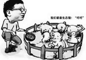 """湖南江华精准扶贫瞄准""""生态猪"""""""