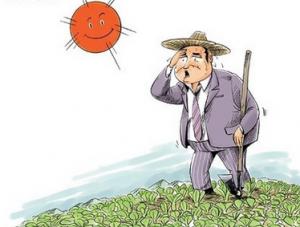 """探讨中国农业出路:""""一亩三分地""""如何养活农民?"""