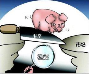 浙江温岭:父子私设杀猪场 非法获利34万