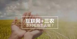 未来农村如何向互联发展:互联网+三农+服务站