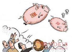 """江西:猪价再涨可能性小 """"猪周期""""现象将减弱"""