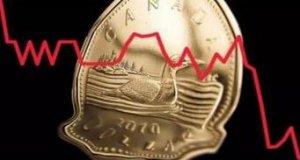 加元贬值意味着加拿大生猪出口量增加