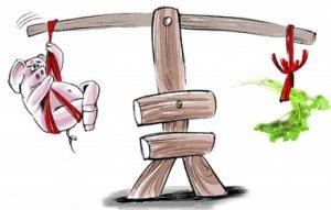 对猪肉、蔬菜价格及CPI的一些看法:通胀无忧