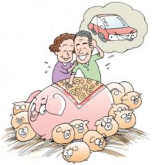 山东滕州市试点生猪价格指数险