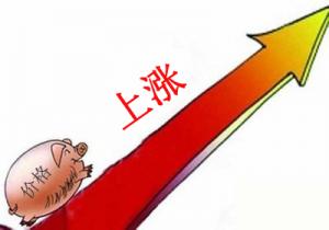 海南:猪价现高点 养殖户仍需防风险