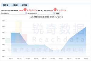 山东猪价继续上浮,全国走势持续微跌