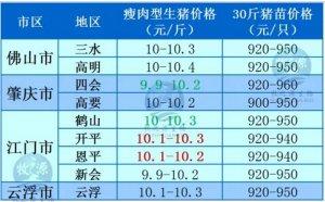 牧之源--广东3月31日猪讯
