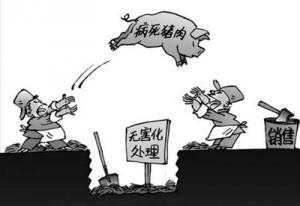 收购销售病毒猪肉60吨 广东东莞冻品店老板等9人一审过堂