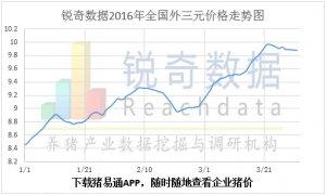 2016年4月1日猪评:猪价整体趋稳鲁豫压价明显