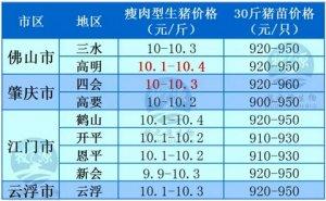 牧之源--广东4月01日猪讯