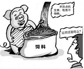 """各路行业大咖纵论""""饲料禁抗"""""""