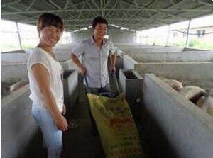 老刘养猪故事――怎样管理夫妻员工