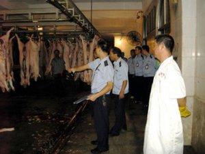 福建晋江检查市区生猪定点屠宰场 查处一起违法案件
