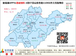 猪易通APP4月07日山东外三元价格地图