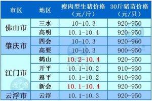 牧之源--广东4月7日猪讯