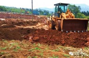 云南:东山镇投资120万元建设能繁母牛养殖小区一个