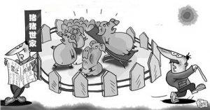 农业部谈生猪禁养:环保不达标 生猪规模养殖难