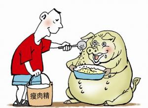 """农业部:近几年基本杜绝生猪养殖中使用""""瘦肉精"""""""
