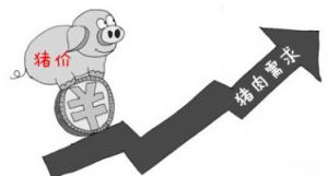 猪肉淡季价格冲高 货源偏紧短期内回落几无可能