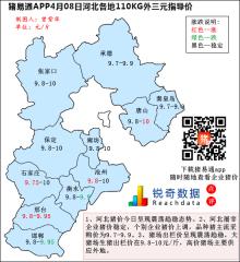 猪易通APP4月08日河北外三元价格地图