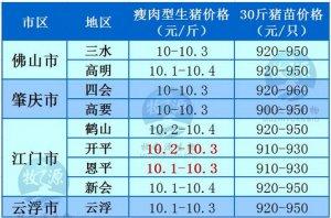 牧之源--广东4月8日猪讯