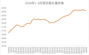 2016年一季度生猪市场大涨18%