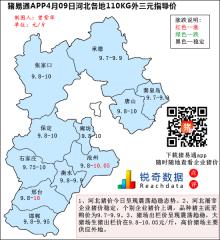 猪易通APP4月09日河北外三元价格地图